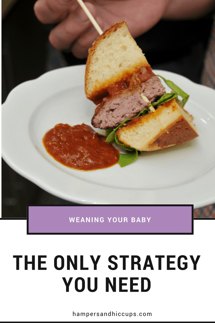 are you looking to start weaning your baby? wondering how to start your baby on solids? Try baby-led weaning for fast and fun results. perfect for the lazy #momlife. #blw how to wean a baby. great resource for advice on giving a baby food and when to start introducing solids.