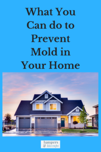 What You Can do to Prevent Mold in Your Home picture of a blue house hampersandhiccups