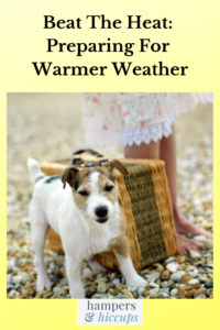 Beat The Heat: Preparing For Warmer Weather girl with picnic basket and dog on a hot day hampersandhiccups
