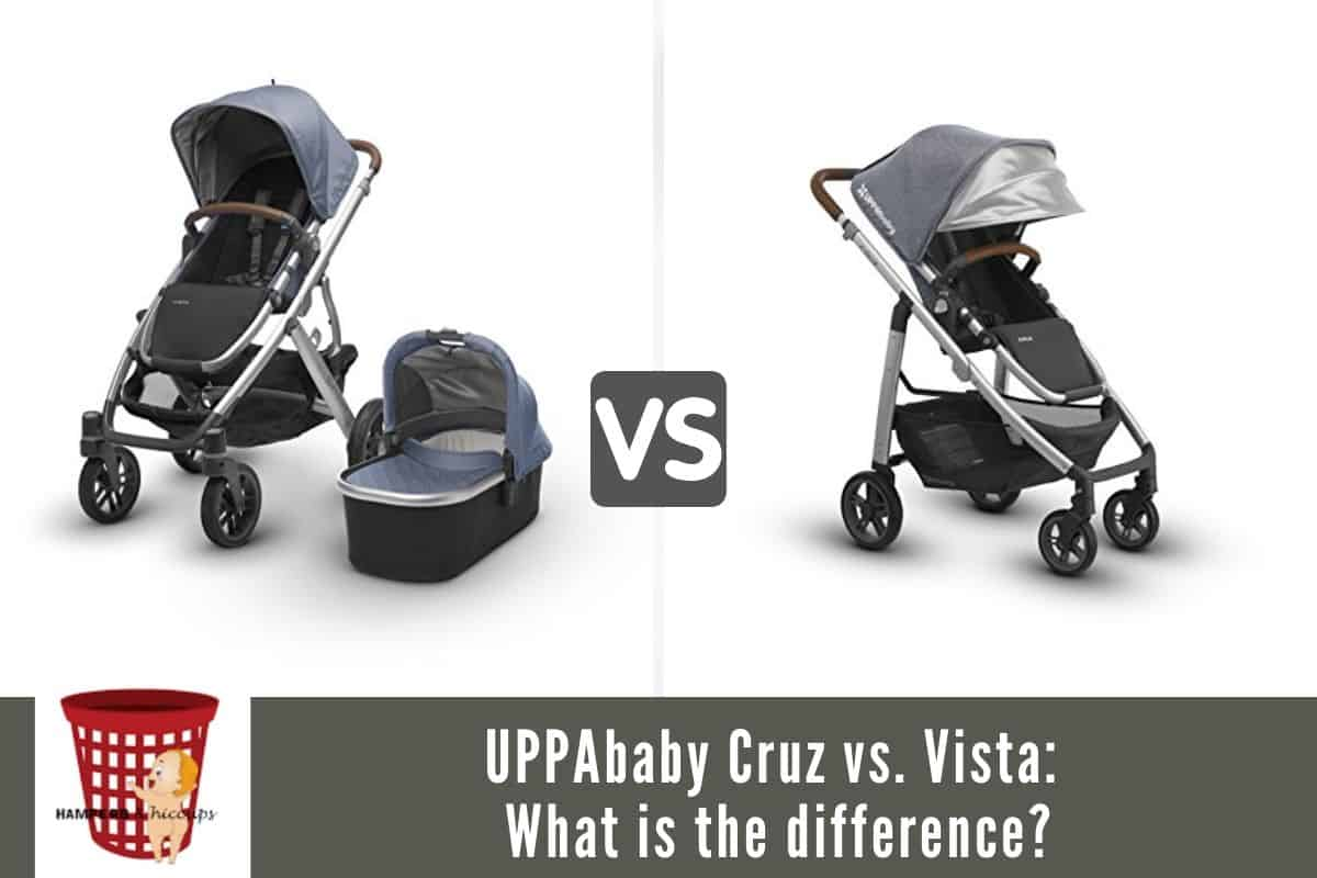 UPPAbaby Cruz vs. Vista: what is the difference?