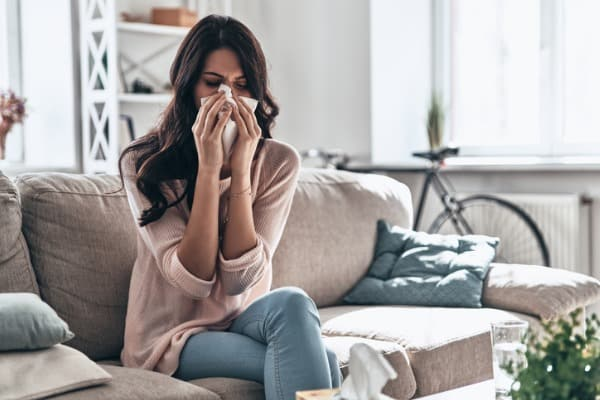 allergies-at-home
