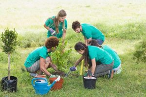 gardening ideas for student