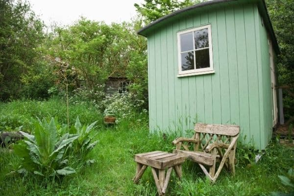 Rustic shed in lush garden