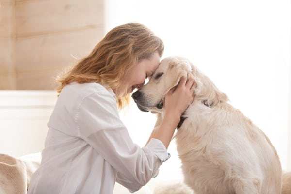 woman hugging her beloved big white dog animal communication