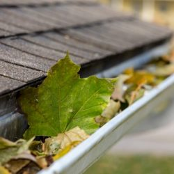 closeup of house rain gutter clogged with colorful leaves falling