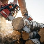 closeup view on chainsaw in strong lumberjack worker hands sawdust