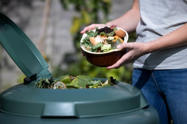 how to maintain your compost