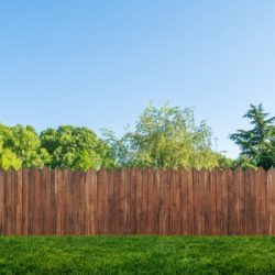basic rules of fencing